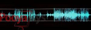 پردازش گفتار چیست؟