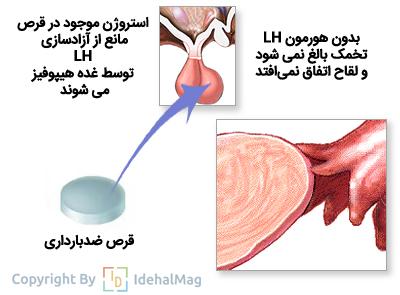 قرص ضدبارداری پروژسترونی