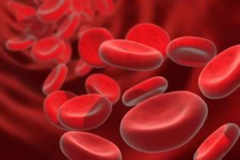انواع سلول خونی