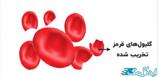 گلبولهای قرمز تخریب شده