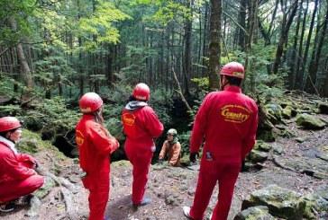 از جنگل خودکشی در ژاپن چه میدانید؟