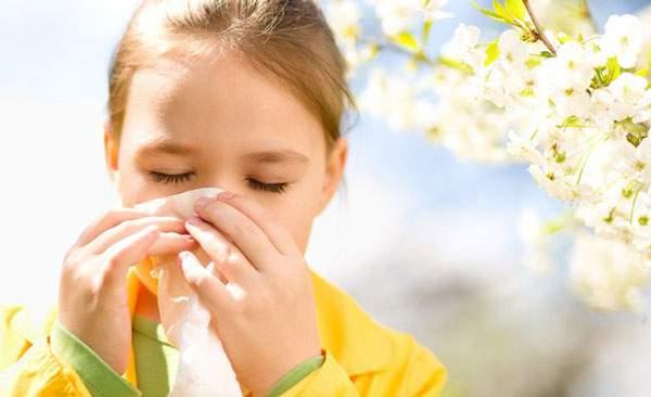 آلرژی و سرماخوردگی