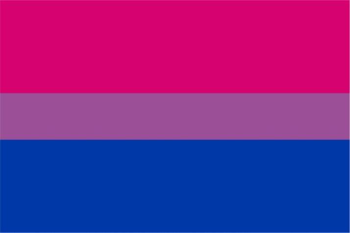 پرچم بایسکشوالها