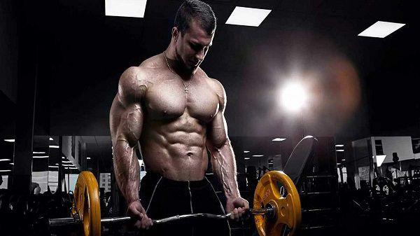 برنامه بدن سازی مبتدی مناسب آقایان چه ویژگی هایی دارد؟