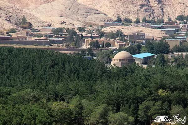 جنگل-پردیسان-کرمان