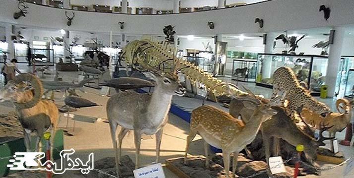موزه زنجان