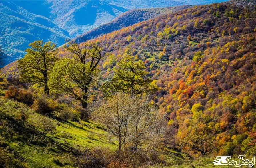 جنگل های هوراند |مناطق گردشگری