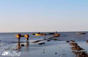 ساحل دریای آرام گلوگاه
