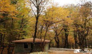 پارک جنگلی و چشمه آب معدنی قرمرض