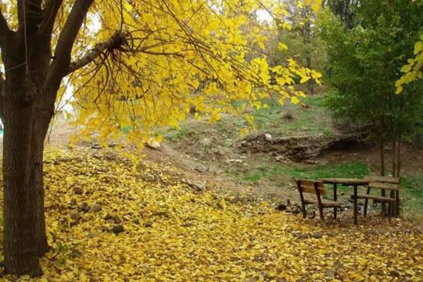 پارک های دنج شرق تهران