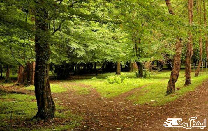 پارک جنگلی ایزدشهر