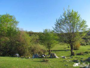 روستای کوشک سرا