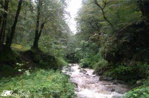 منطقه حفاظت شده بلسکوه