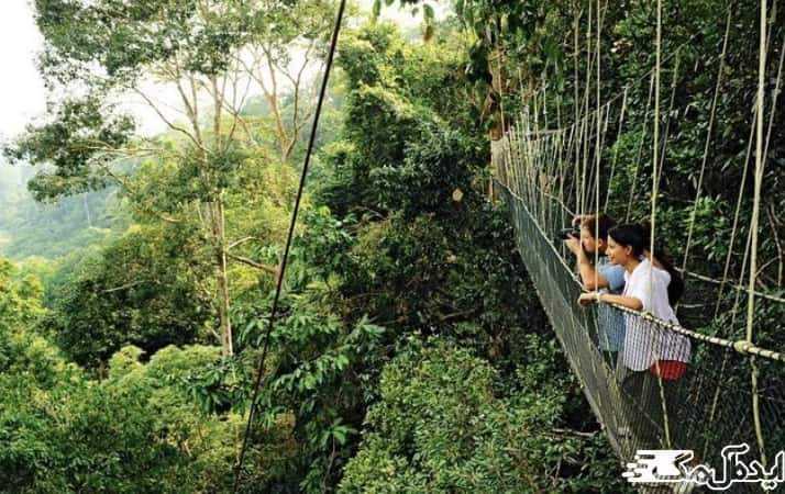 پارک ملی تامان ناگارا