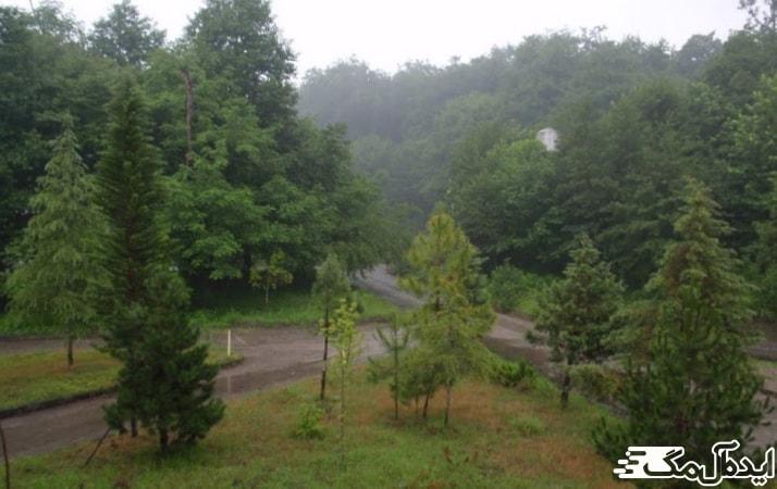 جنگل گردی در متل قو