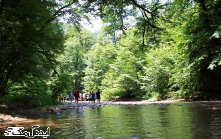جنگل و آبشار پلنگ دره شیرگاه