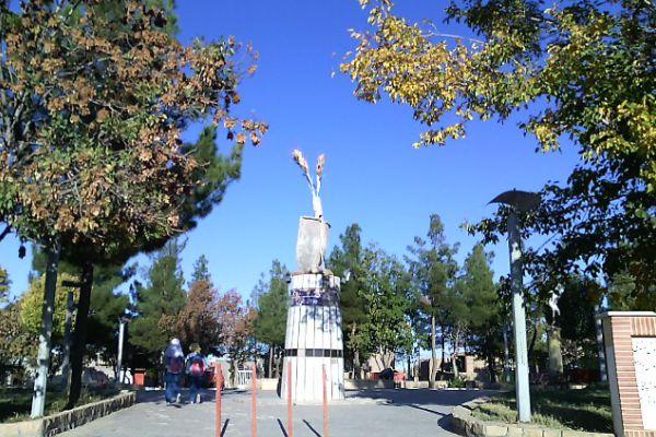 شهر صفی آباد