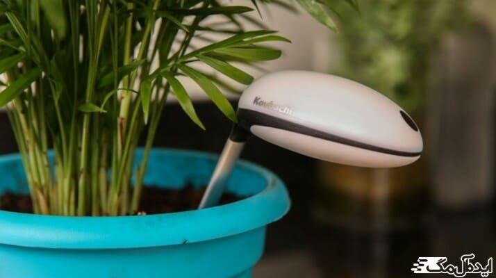 کنترل رطوبت خاک به کمک رطوبت سنج های کاربری در گلدان