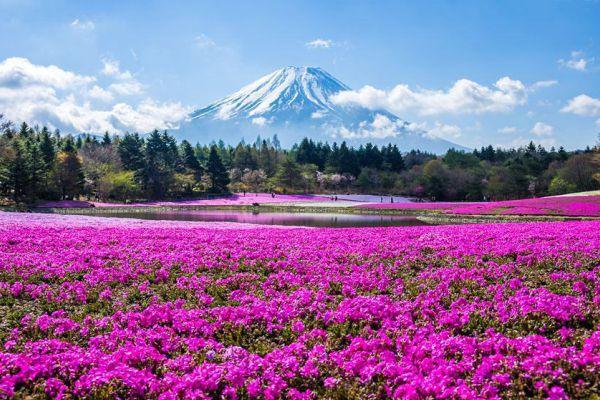 پارک های معروف ژاپن