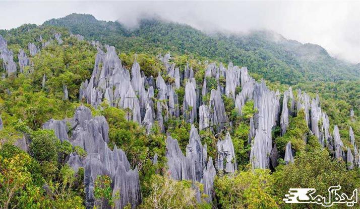 پارک ملی گونونگ مولو از منظره های زیبای دنیا