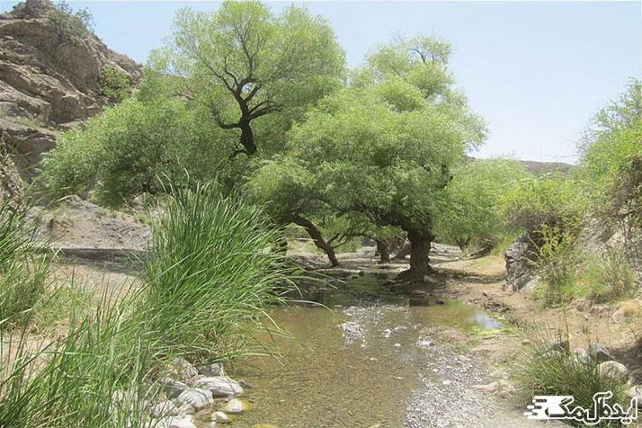 چشمه گرماب از جاذبه های طبیعی رشتخوار