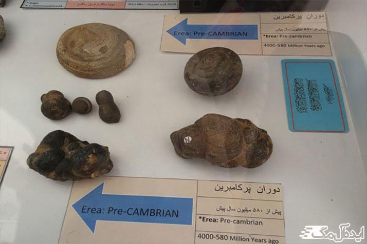 موزه سنگ و فسیل مهدیشهر