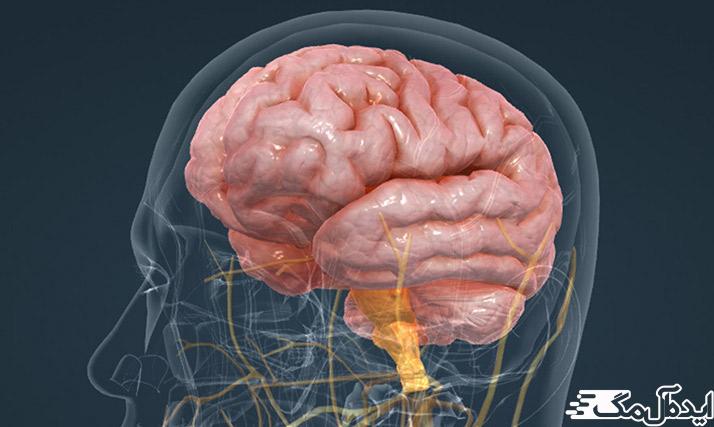 ادم مغزی و مراقبت از بیمار سکته مغزی