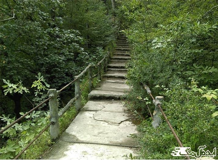 پارک جنگلی میرزا کوچک خان