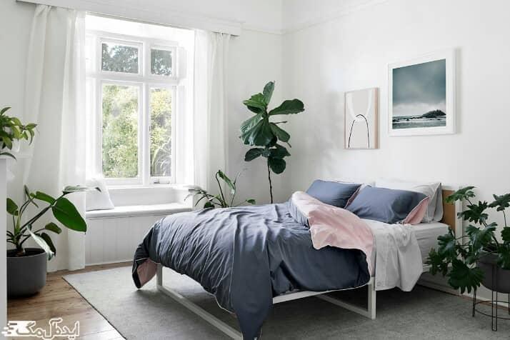 گیاهان در اتاق خواب کوچک