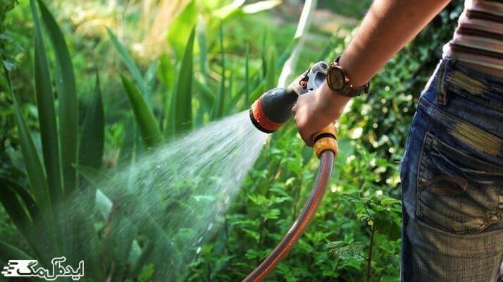 آموزش تشخیص میزان آب مورد نیاز درخت