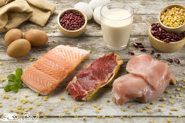 پروتئین موجود در غذاها