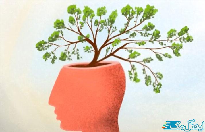 بررسی ساختار و ذهن انسان